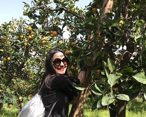 Vigyázz, kész narancsszüret Szicíliában! 2019. január 15-19.